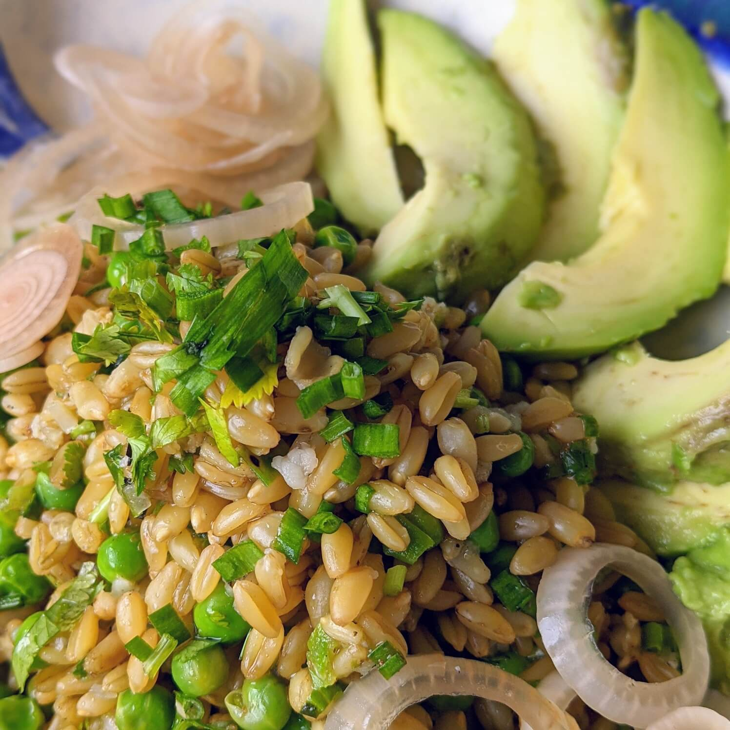 Green wheat/ Freekeh salad